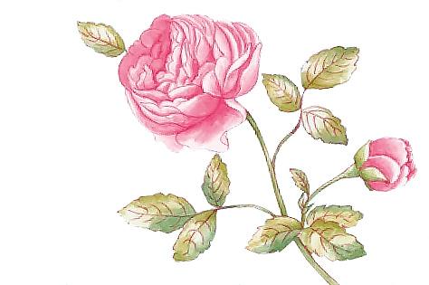 Rose Cottage Levensvreugd Op Tafel Villeroy Boch